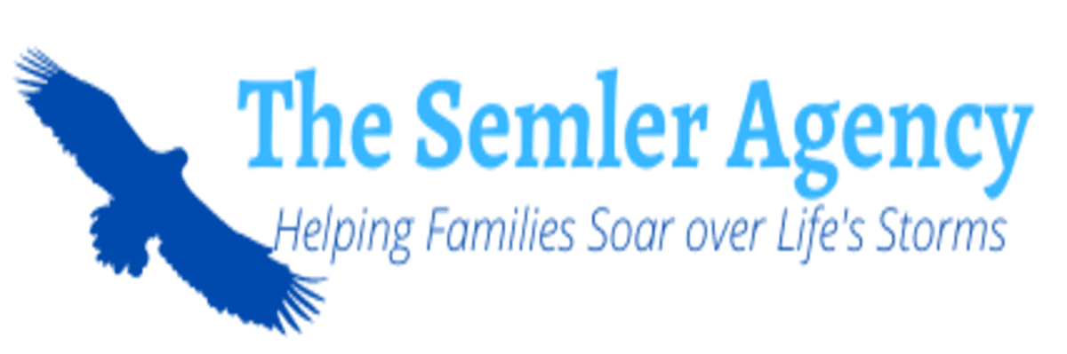 Seeking Driven Sales Consultants- Work from Home, PT/FT at The Semler Agency