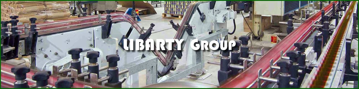 Plant Engineer at LIBARTY Group