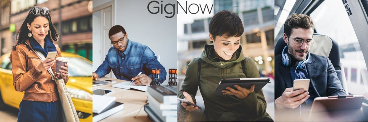 Technology Risk Auditor - Contractor at GigNow