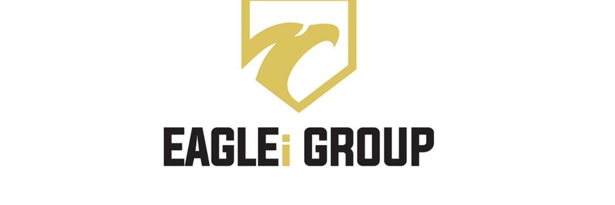 Senior Accountant, Technical Accounting at The EAGLEi Group