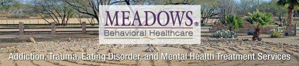 Business Development Liaison, Healthcare Sales at Meadows Behavioral Healthcare