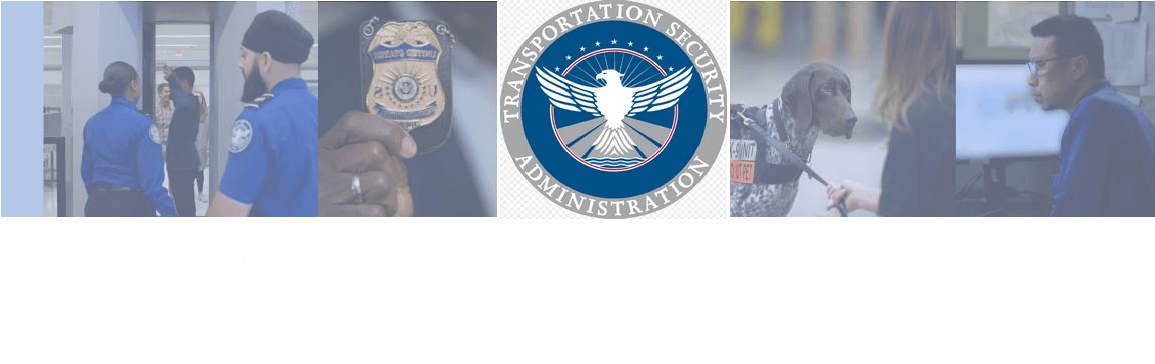 Transportation Security Officer (TSO) at Transportation Security Administration