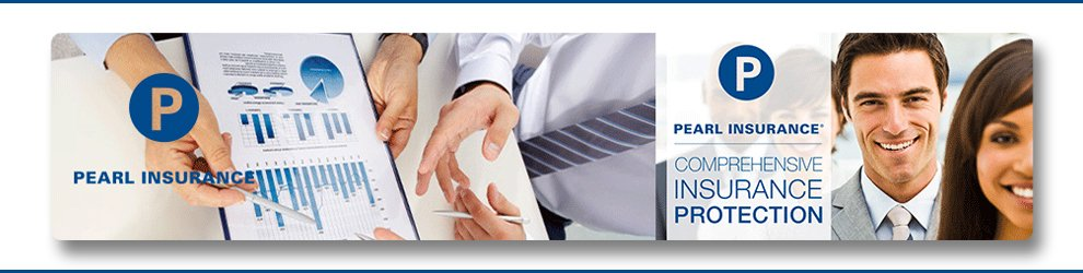 Affinity Business Development Manager at Pearl Insurance