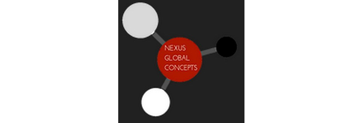 Management Training at Nexus Global Concepts, Inc